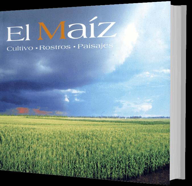 el-maiz